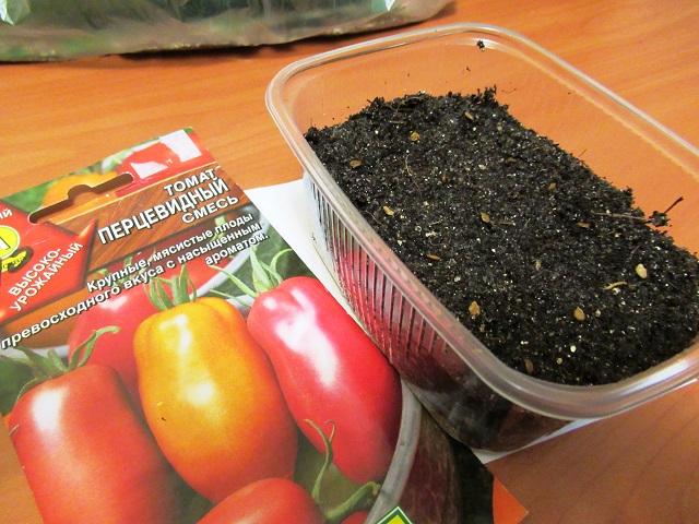 когда надо сажать помидоры на рассаду